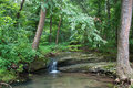Bay creek, Shawnee National Forest, Illinois, USA Royalty Free Stock Photo