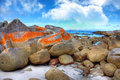 Bay of Fires, Tasmania Stock Photography