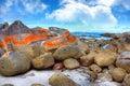 Bay of Fires, Tasmania Royalty Free Stock Photo