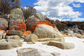 Bay of fires tasmania australia one the most beautiful beaches the world Stock Photo