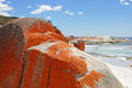 Bay of fires tasmania australia one the most beautiful beaches the world Royalty Free Stock Photography