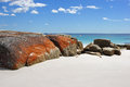 Bay of fires tasmania australia one the most beautiful beaches the world Royalty Free Stock Images