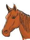 Bay horse hand drawn sketch cartoon illustration of head of Stock Photo