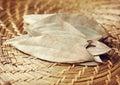 Bay leaf Royalty Free Stock Photo