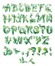 Bay leaf, set of letters