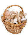 Bbast-basket with mushrooms Royalty Free Stock Photography