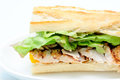 Bbq chicken sandwich Royalty Free Stock Photo