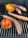 BBQ eggplants and peppers on grill Royalty Free Stock Photo