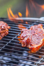 Bbq lamb chops on grill Stock Image