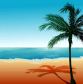 Beach Background 6 Royalty Free Stock Photo