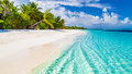 Beach background. Beautiful beach landscape. Tropical nature scene. Palm trees and blue sky. Summer holiday and vacation concept. Royalty Free Stock Photo