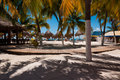 Beach bar with hammocks and palm trees Stock Image