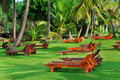 Beach beds beetween tropical trees Royalty Free Stock Image