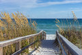 Beach boardwalk with dunes and sea oats sandy path to a snow white on the gulf of mexico ripe in the Stock Photography