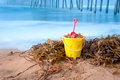 Beach bucket and kelp Royalty Free Stock Image