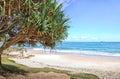 Beach in Byron Bay in Australia Royalty Free Stock Photo