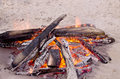Beach campfire on lake with sand shore. burning wood on white sand in daytime Royalty Free Stock Photo