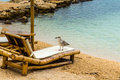 Beach chair and umbrella on sand beach. Concept for rest, relaxation, holidays, spa, resort