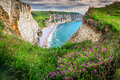 Beach and cliffs of Etretat with colorful spring flowers, France
