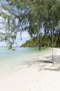 Beach crystal clear water white sand and relax swing tied on the haad chao phao ko pha ngan thailand Stock Image