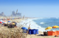 Beach daylight view from a during summer blurred composition focus on vegetation Royalty Free Stock Image
