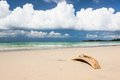 Beach driftwood and dark blue sky sand with white clouds Royalty Free Stock Photos