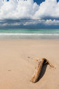 Beach driftwood and dark blue sky sand with white clouds Stock Photography