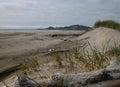 Beach Dunes - Oregon Royalty Free Stock Photo