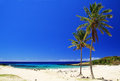 Beach in Easter island Royalty Free Stock Photo