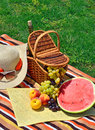 Beach hat sun glasses picnic basket with fruits and bottle of wine on the green grass Stock Image
