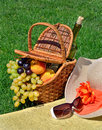 Beach hat sun glasses picnic basket with fruits and bottle of wine on the green grass Stock Photography