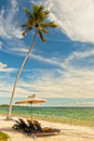 Beach lounge chairs under palm tree at the shore zanzibar tanz with towels umbrella of indian ocean tanzania Stock Image