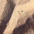 Beach love sand shell Royalty Free Stock Photo