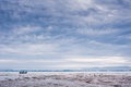 Beach on low tide Royalty Free Stock Photo