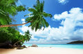 Beach on mahe island in seychelles Royalty Free Stock Photography