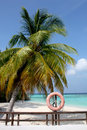 Beach in the Maldives, Palm tree and a buyo Royalty Free Stock Photos