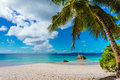 Beach Maldives tropical vacation Royalty Free Stock Photo