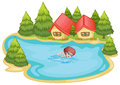 A beach near the pine trees with a boy swimming illustration of on white background Royalty Free Stock Photography
