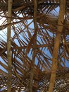Beach palm roof