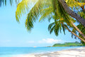 Beach with palm trees klong prao beach koh chang thailand Stock Photo