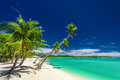 Beach with palm trees over the lagoon on fiji islands tropical coconut Royalty Free Stock Images