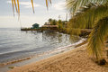 Beach and palms at island of Roatan in Honduras. Royalty Free Stock Photo