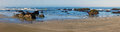 Beach Panorama Royalty Free Stock Images