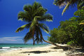 Beach Paradise Royalty Free Stock Photos