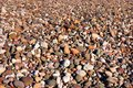 Beach Pebbles. Stock Image
