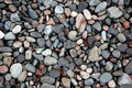 Beach Pebbles. Stock Photo