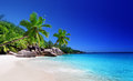 Beach at praslin island seychelles Royalty Free Stock Images
