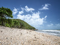 Beach queensland australia an image of a beautiful in Royalty Free Stock Photo