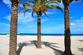 Beach of San Vito Lo Capo, Sicily Royalty Free Stock Photography