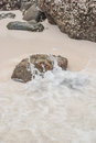 Beach sand and sea water getting wet by the Royalty Free Stock Images